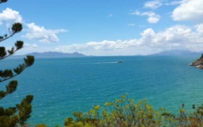 Discover Magnetic Island